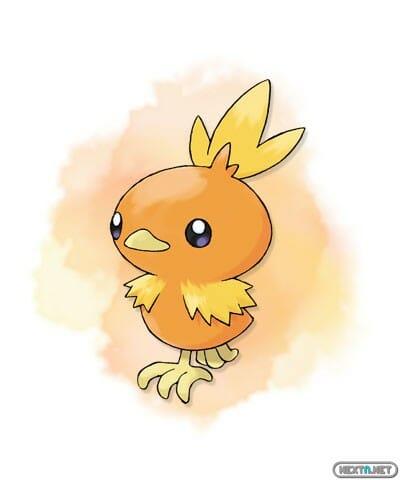 1308-09 Pokémon X-Y Torchic artwork