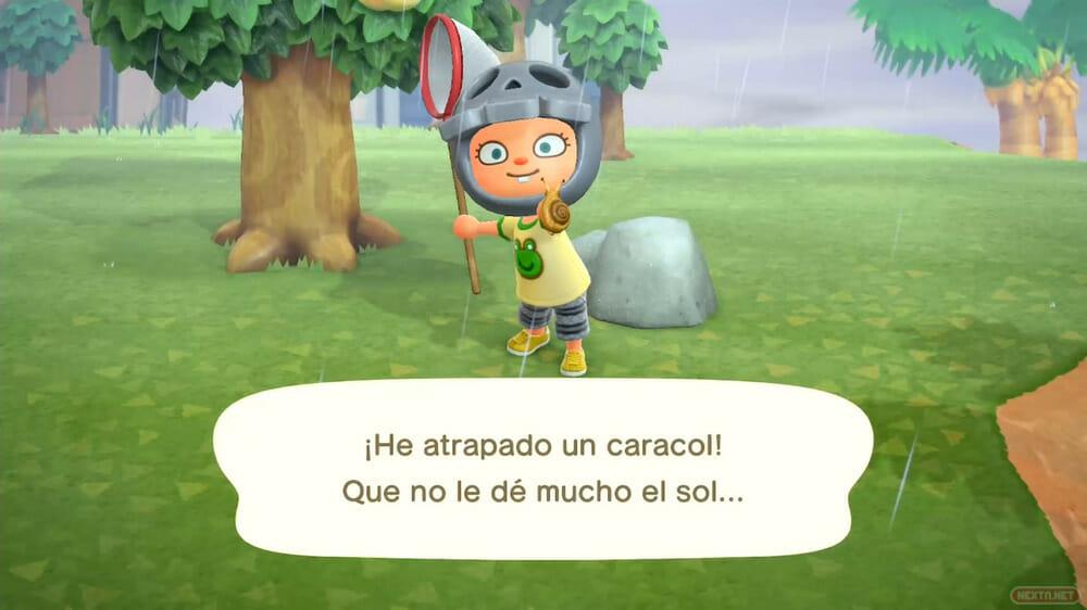 Guía Animal Crossing New Horizons caracol bicho lluvia
