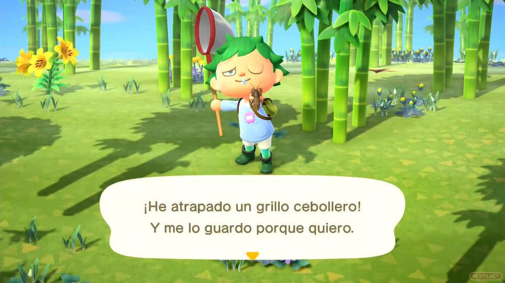 Guía Animal Crossing New Horizons grillo cebollero