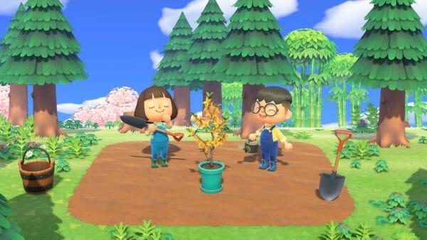 Forsitia Día del Árbol Animal Crossing: New Horizons
