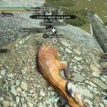 Guía Monster Hunter Rise Capturado trampa escollo