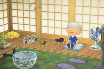 Animal Crossing New Horizons objetos temporada agosto